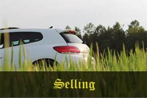 Car Dealership wanting trade ins